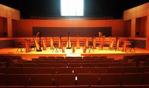 Harps onstage at UW Parkside