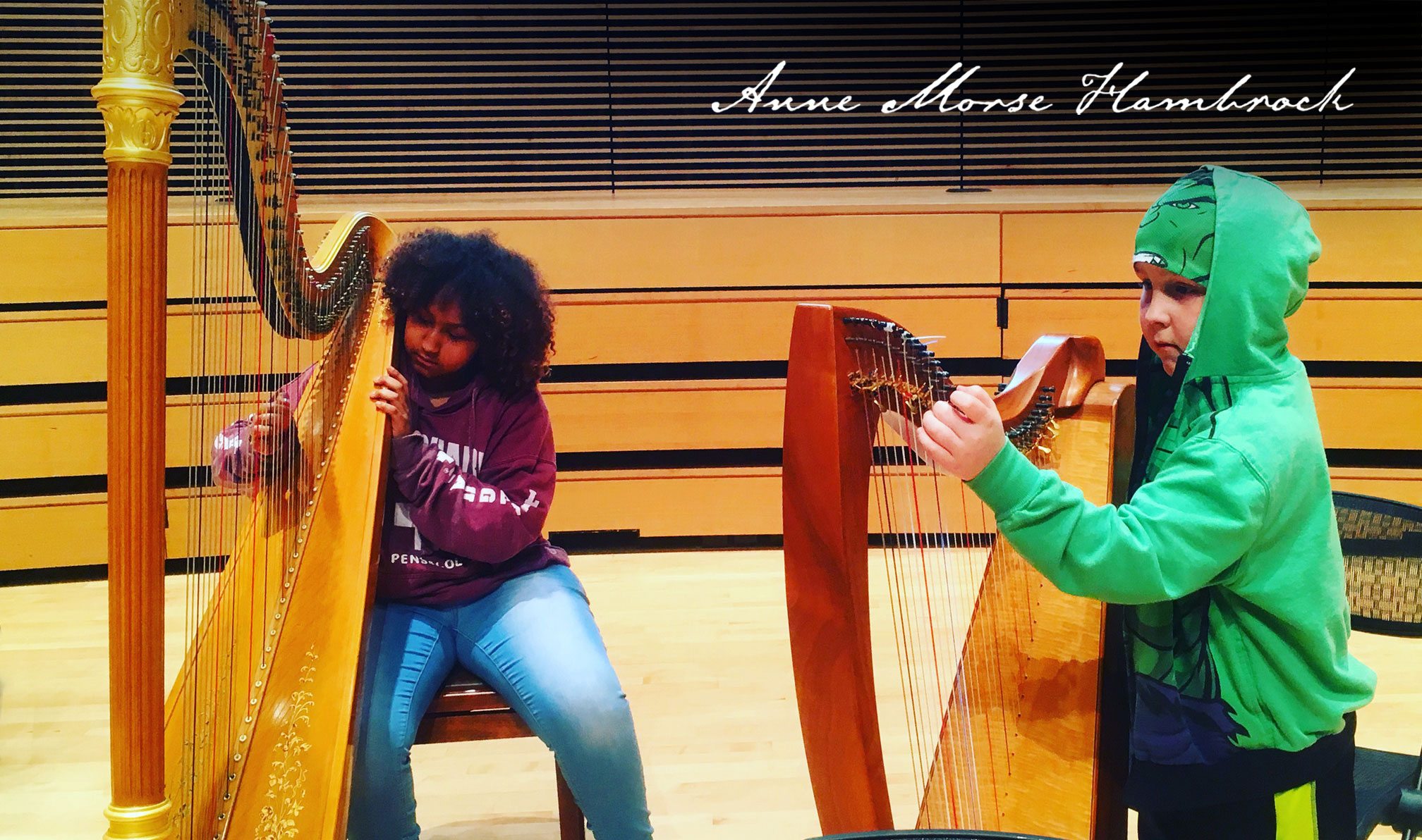 Anne Morse-Hambrock Harp School Visits